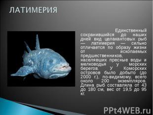 ЛАТИМЕРИЯ Единственный сохранившийся до наших дней вид целакантовых рыб — латиме