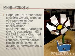 Мини-роботыСердцем TeRK является система Qwerk, которая объединяет набор оборудо