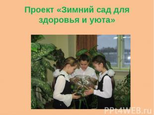 Проект «Зимний сад для здоровья и уюта»