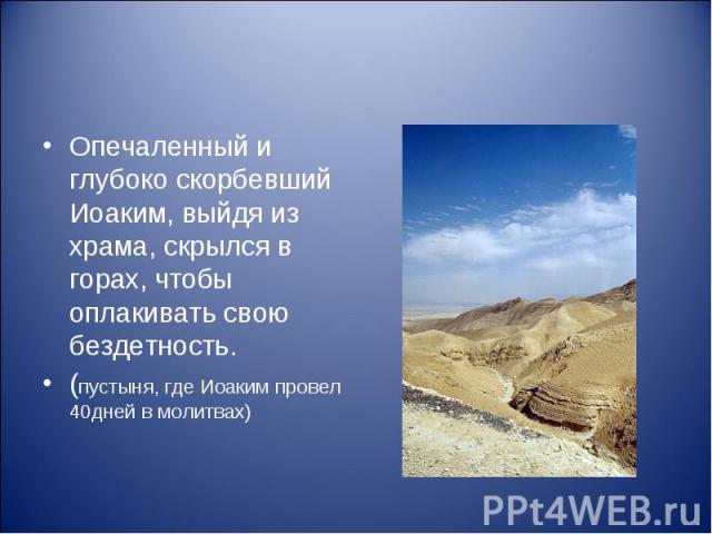 Опечаленный и глубоко скорбевший Иоаким, выйдя из храма, скрылся в горах, чтобы оплакивать свою бездетность. (пустыня, где Иоаким провел 40дней в молитвах)
