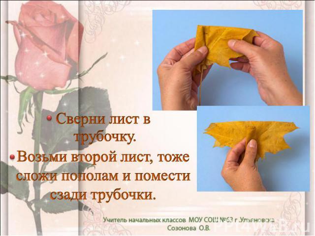 Сверни лист в трубочку. Возьми второй лист, тоже сложи пополам и помести сзади трубочки.