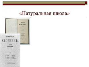 «Натуральная школа» ФИЗИОЛОГИЧЕСКИЙ ОЧЕРК — бытовой нравоописательный очерк, пол