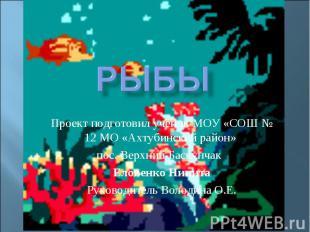 Рыбы Проект подготовил ученик МОУ «СОШ № 12 МО «Ахтубинский район» пос. Верхний