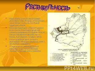 Растительность Наша область расположена на границе лесостепи и степи. Площадь ле