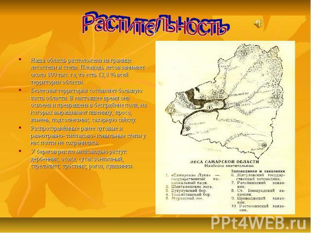 Растительность Наша область расположена на границе лесостепи и степи. Площадь лесов занимает около 800 тыс. га, то есть 12,8 % всей территории области. Безлесная территория составляет большую часть области. В настоящее время она освоена и превращена…