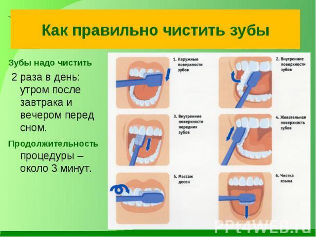 Как правильно чистить зубыЗубы надо чистить 2 раза в день: утром после завтрака и вечером перед сном. Продолжительность процедуры – около 3 минут.