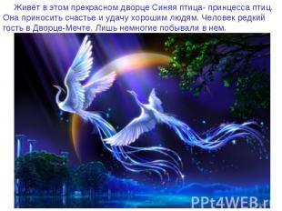 Живёт в этом прекрасном дворце Синяя птица- принцесса птиц. Она приносить счасть