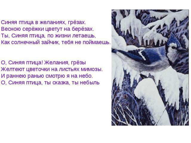 Синяя птица в желаниях, грёзах. Весною серёжки цветут на берёзах. Ты, Синяя птица, по жизни летаешь, Как солнечный зайчик, тебя не поймаешь. О, Синяя птица! Желания, грёзы Желтеют цветочки на листьях мимозы. И раннею ранью смотрю я на небо. О, Синяя…
