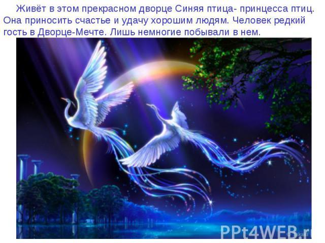 Живёт в этом прекрасном дворце Синяя птица- принцесса птиц. Она приносить счастье и удачу хорошим людям. Человек редкий гость в Дворце-Мечте. Лишь немногие побывали в нем.