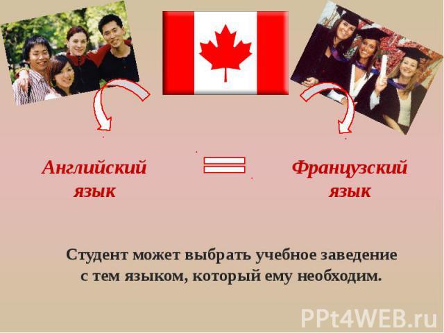 Английский язык Французский язык Студент может выбрать учебное заведение с тем языком, который ему необходим.