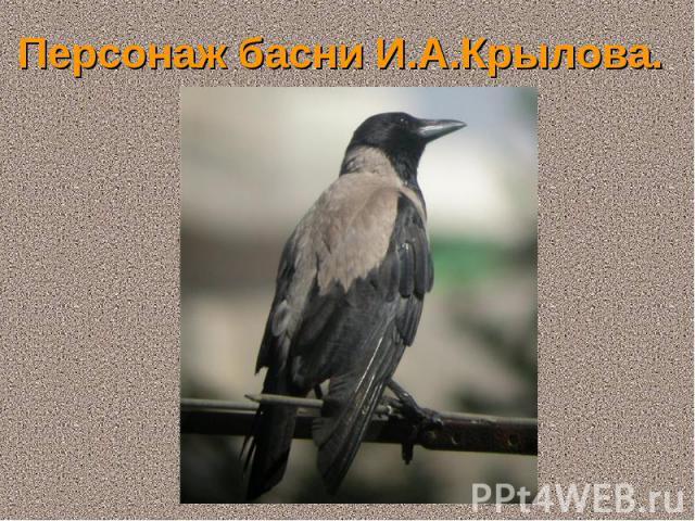 Персонаж басни И.А.Крылова.