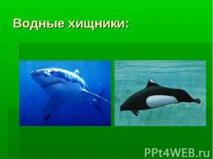 Водные хищники: