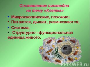 Составление синквейна на тему «Клетка» Микроскопические, похожие; Питаются, дыша
