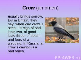 Crow (an omen)usually brings sorrow. But in Britain, they say, when one crow is