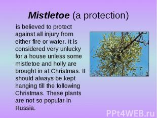 Mistletoe (a protection)is believed to protect against all injury from either fi