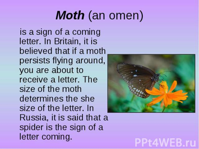 Moth (an omen)is a sign of a coming letter. In Britain, it is believed that if a moth persists flying around, you are about to receive a letter. The size of the moth determines the she size of the letter. In Russia, it is said that a spider is the s…