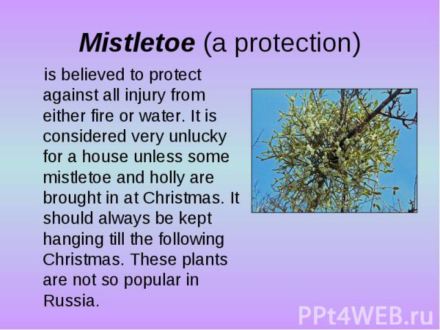 Mistletoe (a protection)is believed to protect against all injury from either fire or water. It is considered very unlucky for a house unless some mistletoe and holly are brought in at Christmas. It should always be kept hanging till the following C…