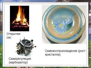 Открытая система Саморегуляция (карбюратор) Самовоспроизведение (рост кристалла)