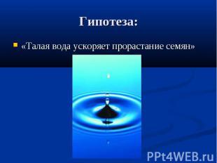 Гипотеза: «Талая вода ускоряет прорастание семян»