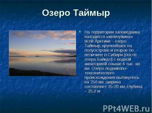 Озеро Таймыр На территории заповедника находится «жемчужина» всей Арктики – озер