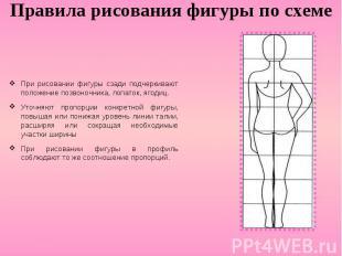 Правила рисования фигуры по схеме При рисовании фигуры сзади подчеркивают положе