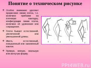 Понятие о техническом рисункеОсобое внимание уделяют прорисовке линии плеча, т.е