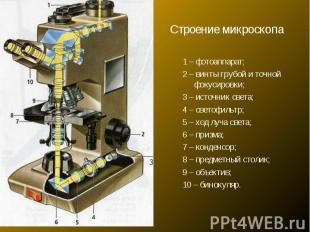Строение микроскопа1 – фотоаппарат; 2 – винты грубой и точной фокусировки; 3 – и