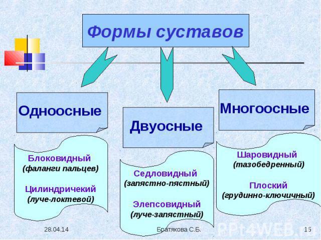 Формы суставов Одноосные Блоковидный (фаланги пальцев) Цилиндричекий (луче-локтевой) Двуосные Седловидный (запястно-пястный) Элепсовидный (луче-запястный) Многоосные Шаровидный (тазобедренный) Плоский (грудинно-ключичный)