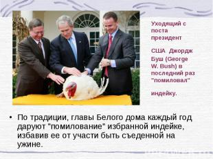 """Уходящий с поста президент США Джордж Буш (George W. Bush) в последний раз """"поми"""