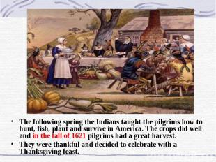 The following spring the Indians taught the pilgrims how to hunt, fish, plant an