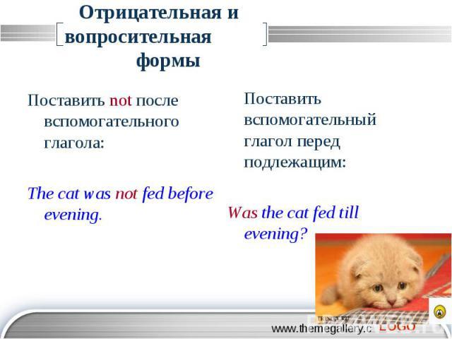 Отрицательная и вопросительная формы Поставить not после вспомогательного глагола: The cat was not fed before evening. Поставить вспомогательный глагол перед подлежащим: Was the cat fed till evening?