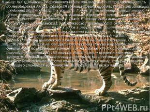 В конце XIX в. область постоянного обитания амурского тигра простиралась до лево