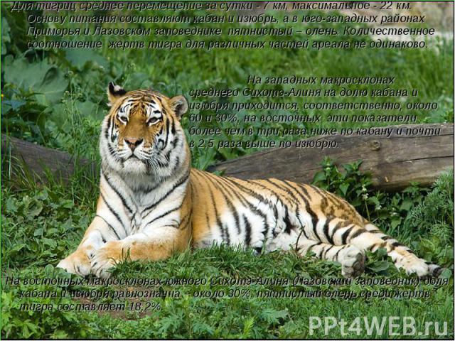 Для тигриц среднее перемещение за сутки - 7 км, максимальное - 22 км. Основу питания составляют кабан и изюбрь, а в юго-западных районах Приморья и Лазовском заповеднике пятнистый – олень. Количественное соотношение жертв тигра для различных частей …