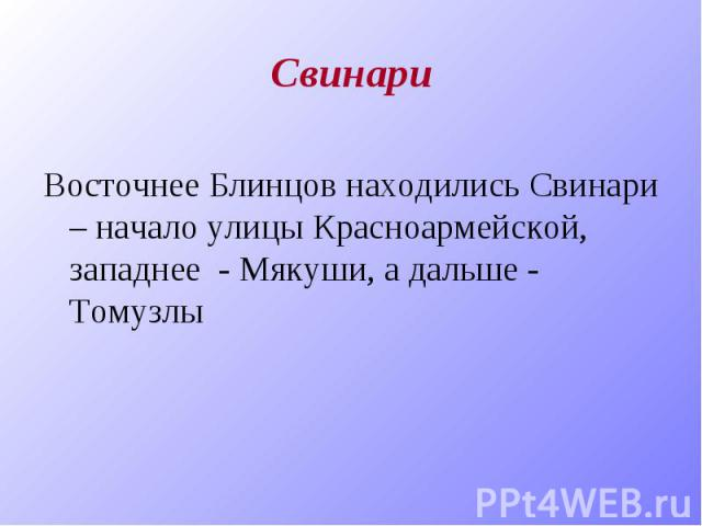 Свинари Восточнее Блинцов находились Свинари – начало улицы Красноармейской, западнее - Мякуши, а дальше - Томузлы