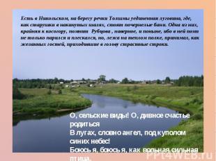 Есть в Никольском, на берегу речки Толшмы уединенная луговина, где, как старушки
