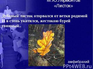 М.Ю.Лермонтов «Листок» Дубовый листок оторвался от ветки родимой И в степь укати