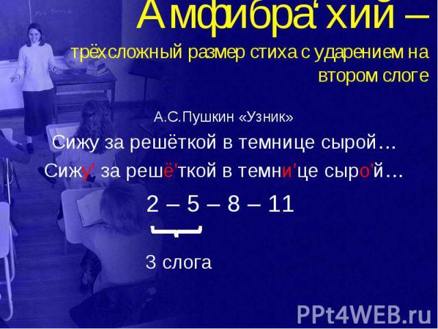Амфибра'хий – трёхсложный размер стиха с ударением на втором слоге А.С.Пушкин «Узник» Сижу за решёткой в темнице сырой… Сижу' за решё'ткой в темни'це сыро'й… 2 – 5 – 8 – 11 3 слога