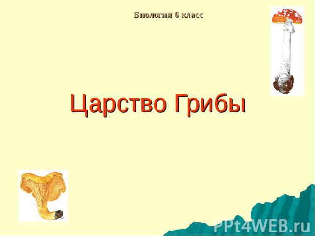 Биология 6 класс Царство Грибы
