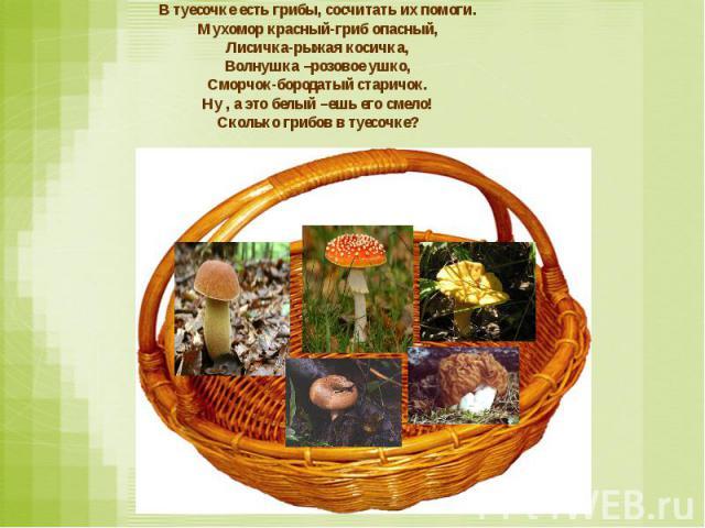 В туесочке есть грибы, сосчитать их помоги. Мухомор красный-гриб опасный, Лисичка-рыжая косичка, Волнушка –розовое ушко, Сморчок-бородатый старичок. Ну , а это белый –ешь его смело! Сколько грибов в туесочке?