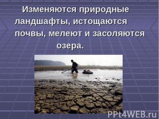 Изменяются природные ландшафты, истощаются почвы, мелеют и засоляются озера.