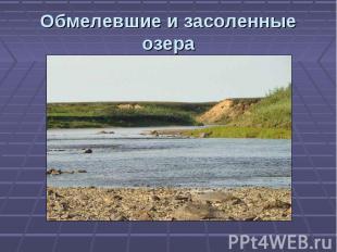 Обмелевшие и засоленные озера