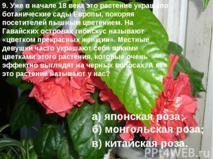 9. Уже в начале 18 века это растение украшало ботанические сады Европы, покоряя