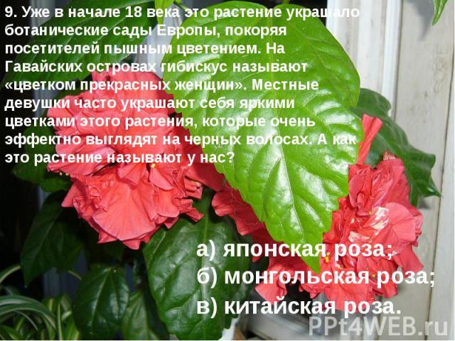 9. Уже в начале 18 века это растение украшало ботанические сады Европы, покоряя посетителей пышным цветением. На Гавайских островах гибискус называют «цветком прекрасных женщин». Местные девушки часто украшают себя яркими цветками этого растения, ко…