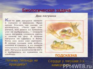 Биологическая задачаПочему легенда не правдива? Сердце у лягушки 3 х камерное!!!