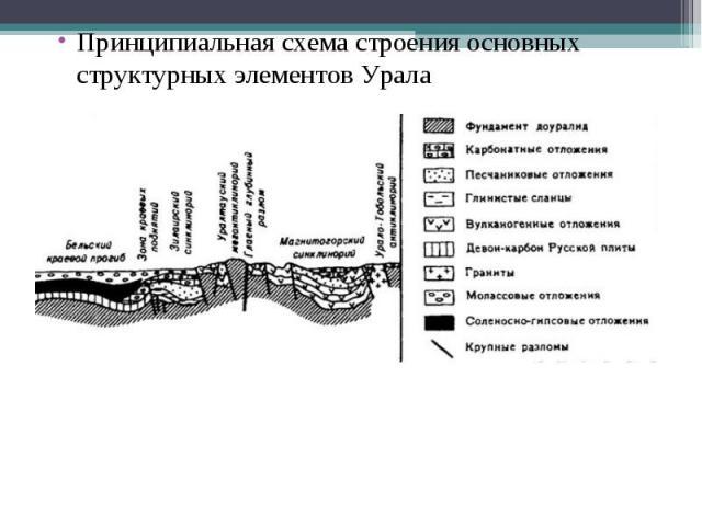 Принципиальная схема строения основных структурных элементов Урала Принципиальная схема строения основных структурных элементов Урала