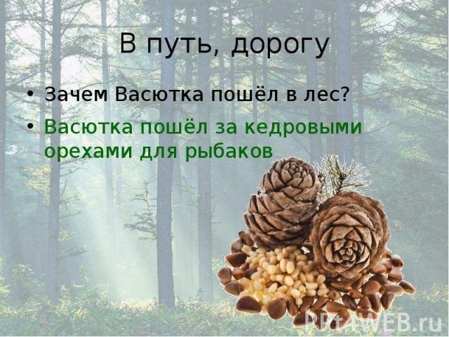 В путь, дорогу Зачем Васютка пошёл в лес? Васютка пошёл за кедровыми орехами для рыбаков