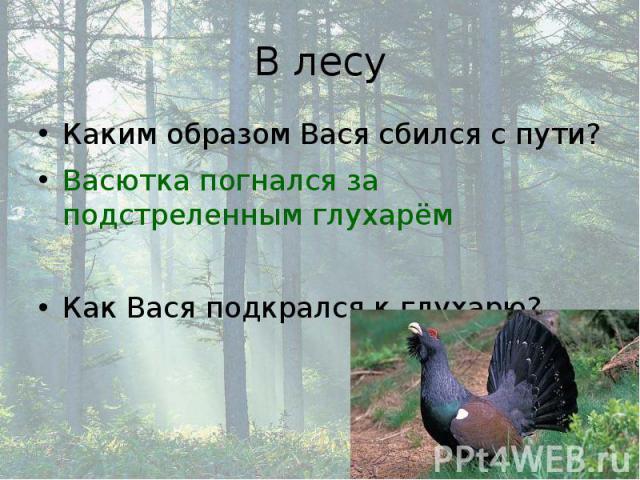 В лесу Каким образом Вася сбился с пути? Васютка погнался за подстреленным глухарём Как Вася подкрался к глухарю?