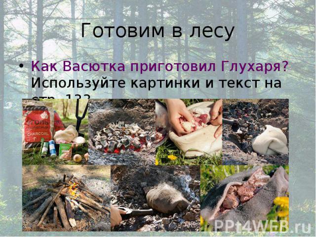 Готовим в лесу Как Васютка приготовил Глухаря? Используйте картинки и текст на стр. 133