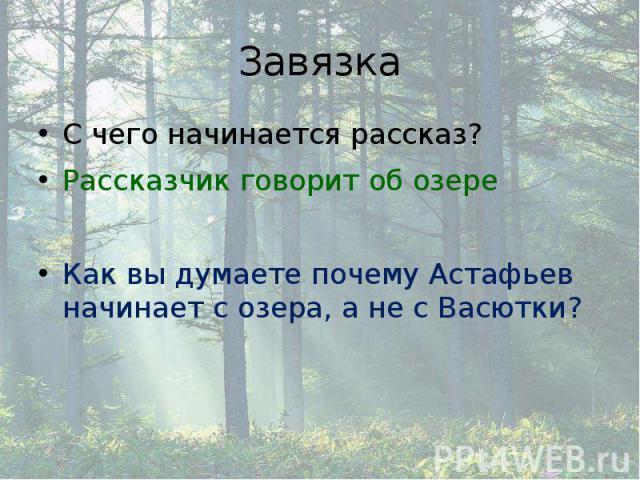Завязка С чего начинается рассказ? Рассказчик говорит об озере Как вы думаете почему Астафьев начинает с озера, а не с Васютки?