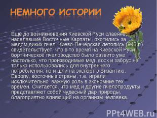 Еще до возникновения Киевской Руси славяне, населявшие Восточные Карпаты, охотил